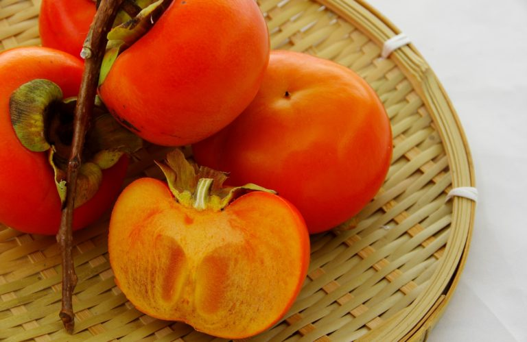 食通語通 ☆柿